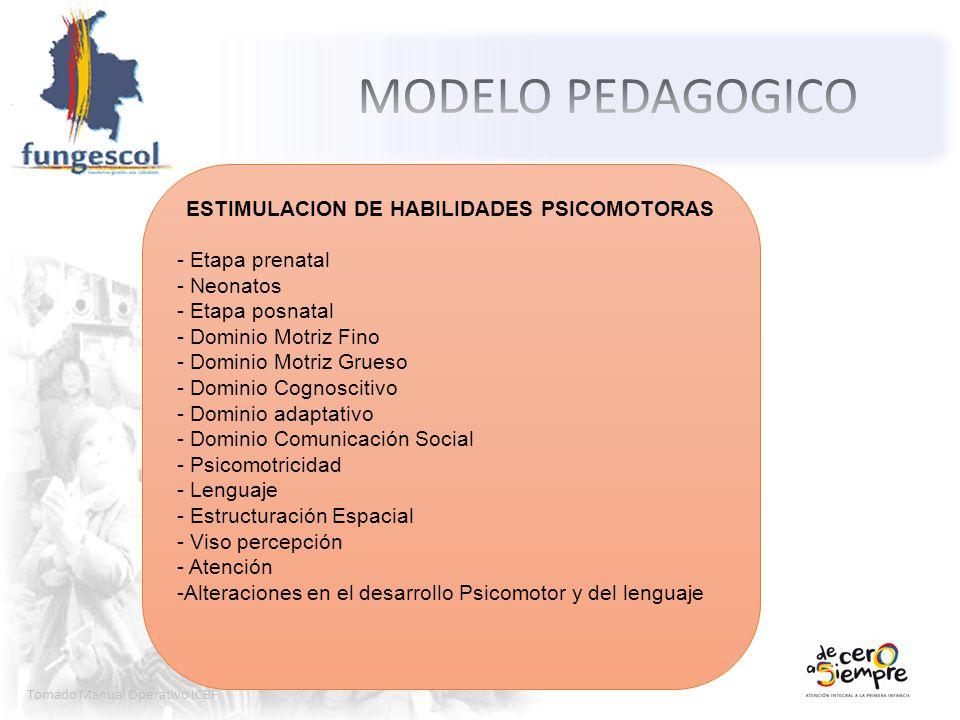 ESTIMULACION DE HABILIDADES PSICOMOTORAS
