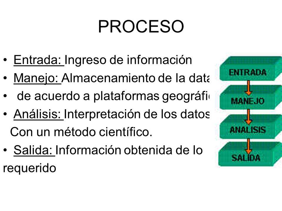 PROCESO Entrada: Ingreso de información