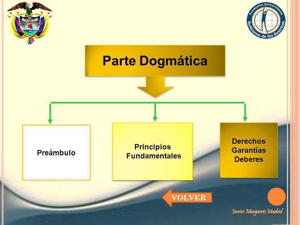 Parte Dogmática Derechos Principios Garantías Preámbulo Fundamentales