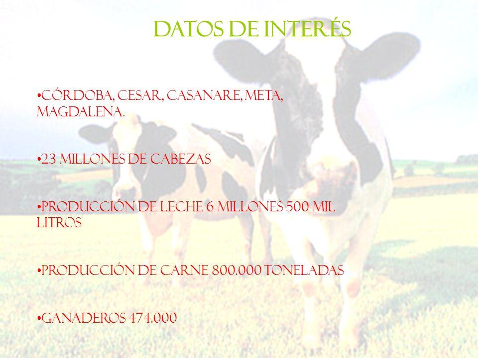 Datos de interés Córdoba, Cesar, Casanare, Meta, Magdalena.