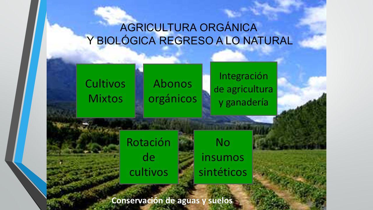 Cultivos Mixtos Abonos orgánicos Rotación de cultivos