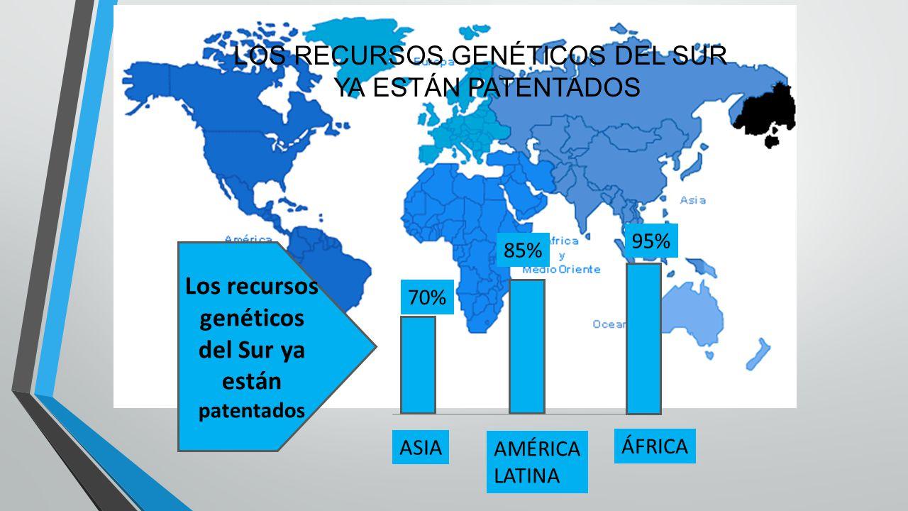 Los recursos genéticos del Sur ya están patentados