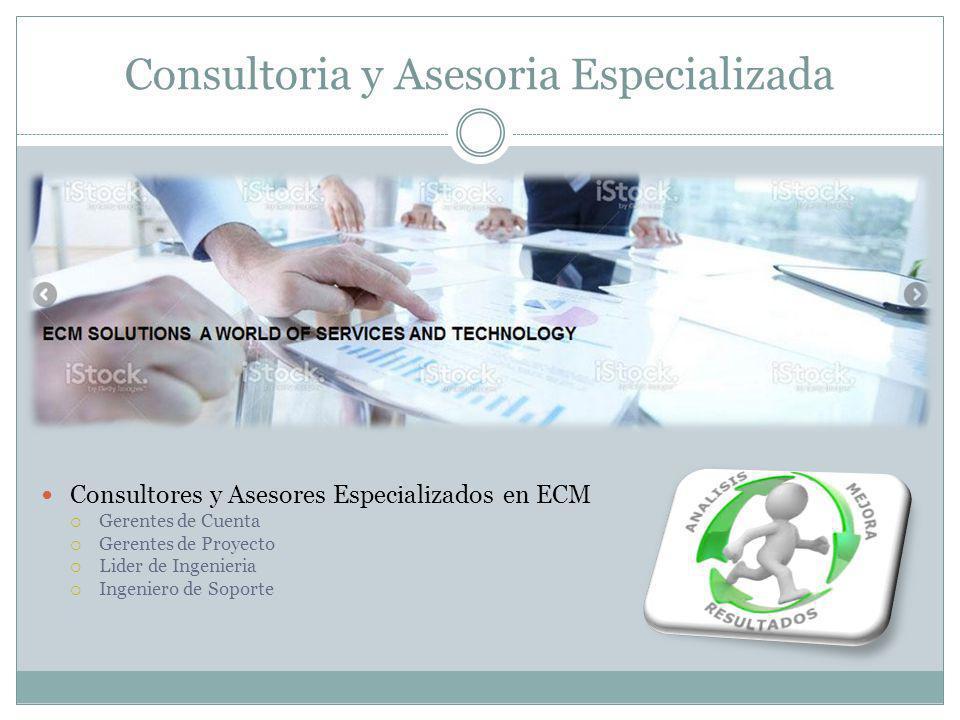 Consultoria y Asesoria Especializada
