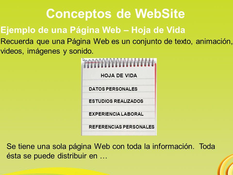 Conceptos de WebSite