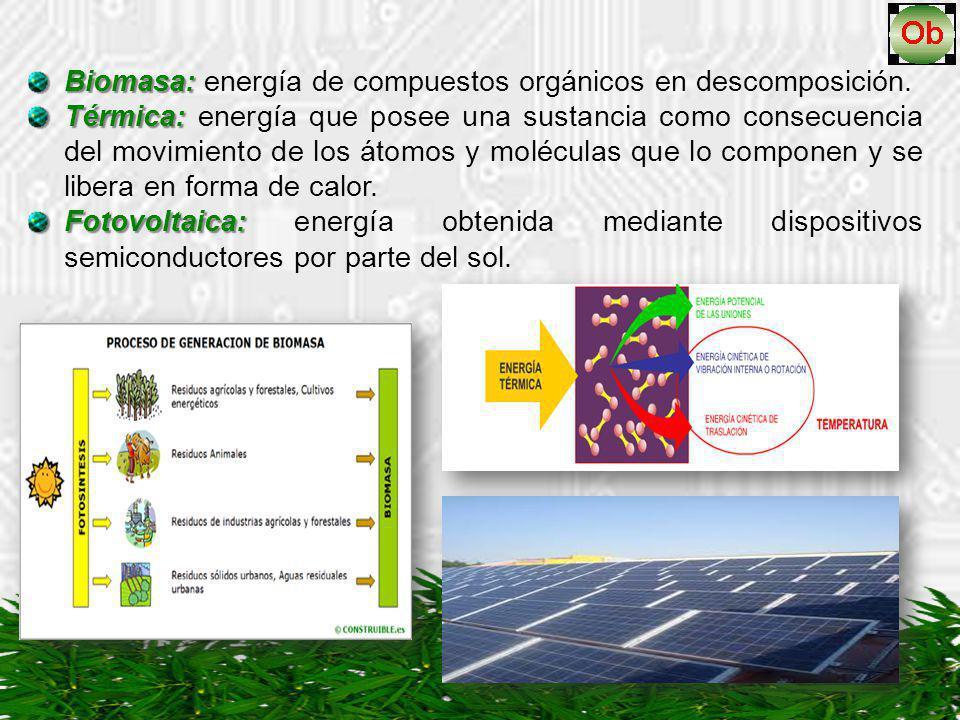Biomasa: energía de compuestos orgánicos en descomposición.