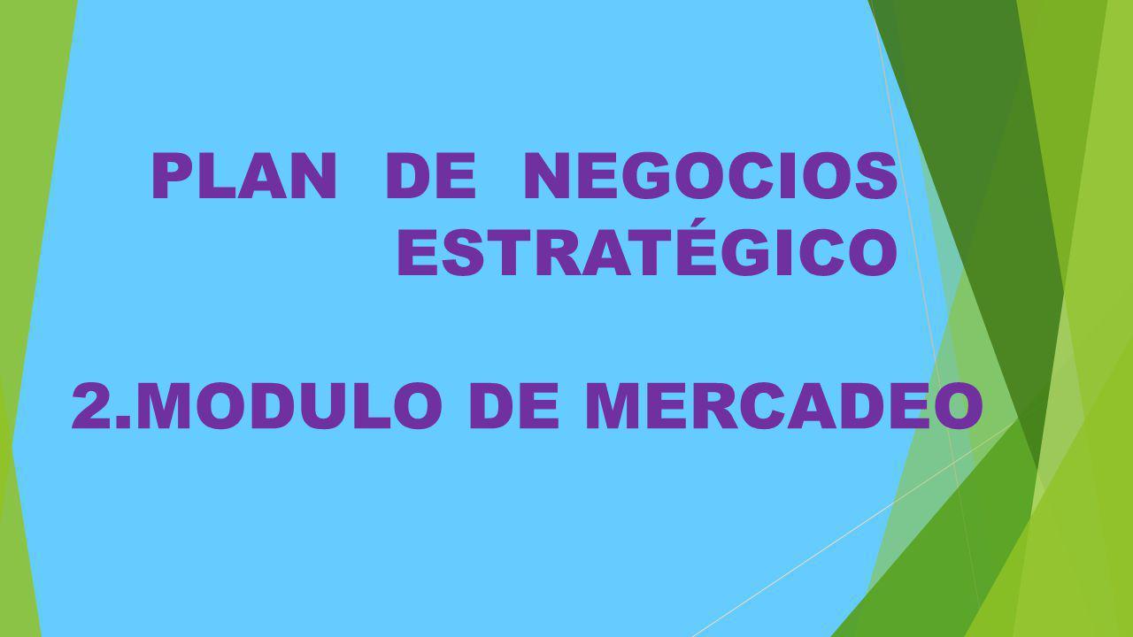 PLAN DE NEGOCIOS ESTRATÉGICO