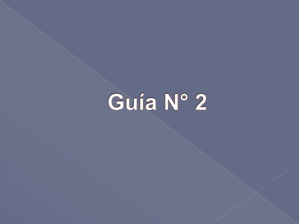Guía N° 2