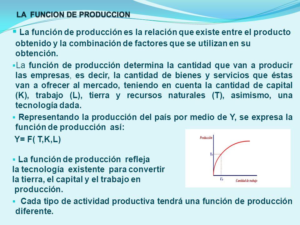LA FUNCION DE PRODUCCION
