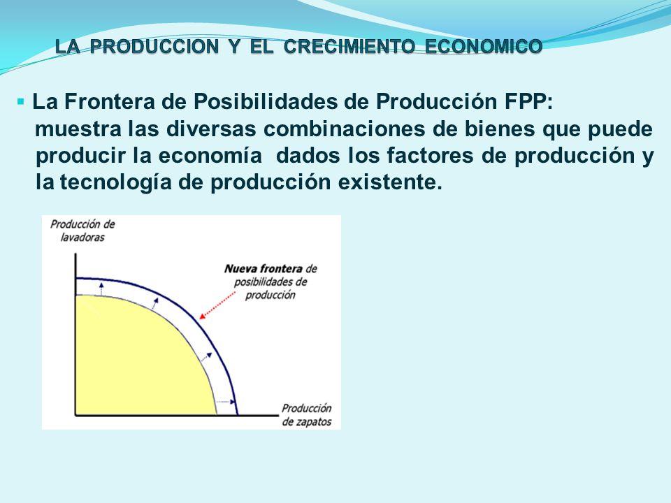 LA PRODUCCION Y EL CRECIMIENTO ECONOMICO