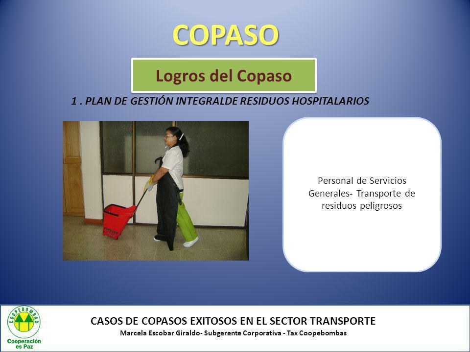 COPASO Logros del Copaso