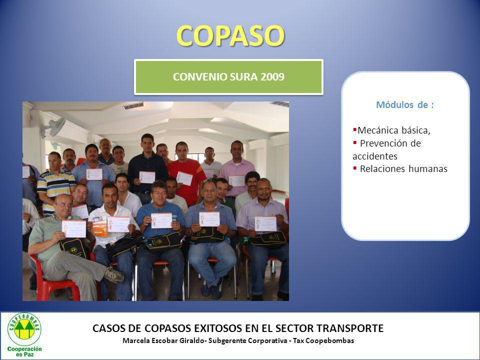 COPASO CONVENIO SURA 2009. Módulos de : Mecánica básica, Prevención de accidentes. Relaciones humanas.