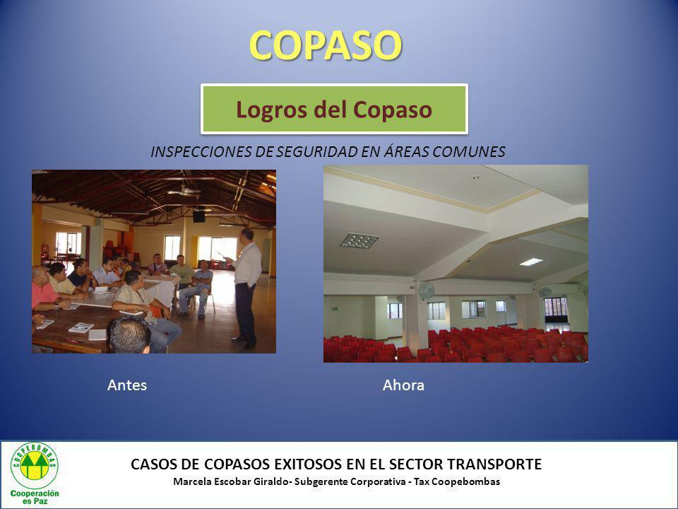 COPASO Logros del Copaso INSPECCIONES DE SEGURIDAD EN ÁREAS COMUNES