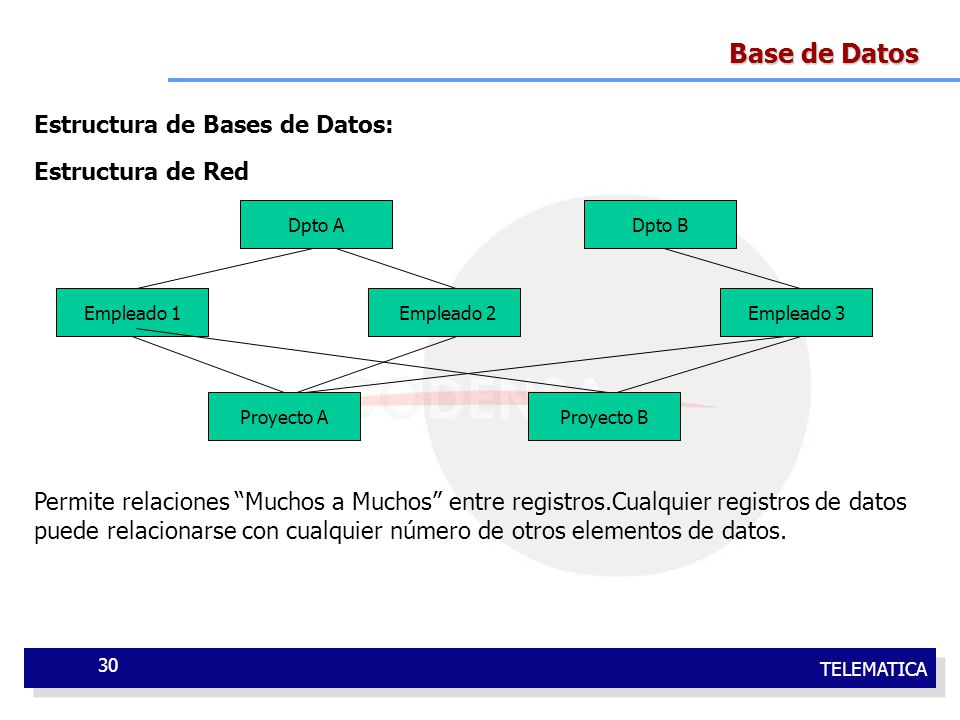 Base de Datos Estructura de Bases de Datos: Estructura de Red