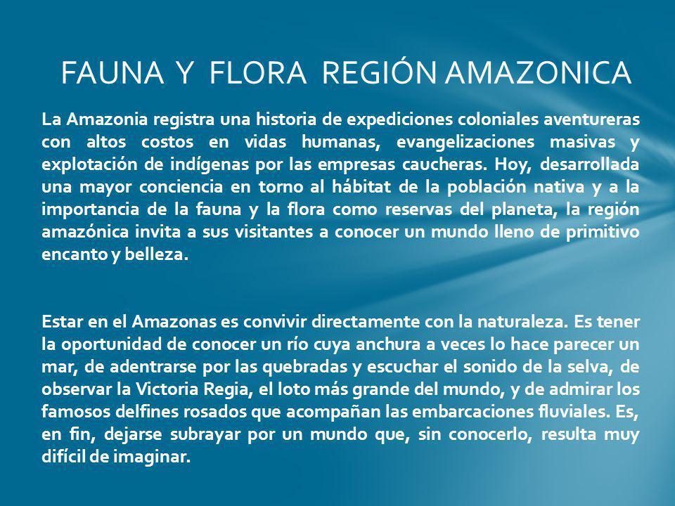 FAUNA Y FLORA REGIÓN AMAZONICA
