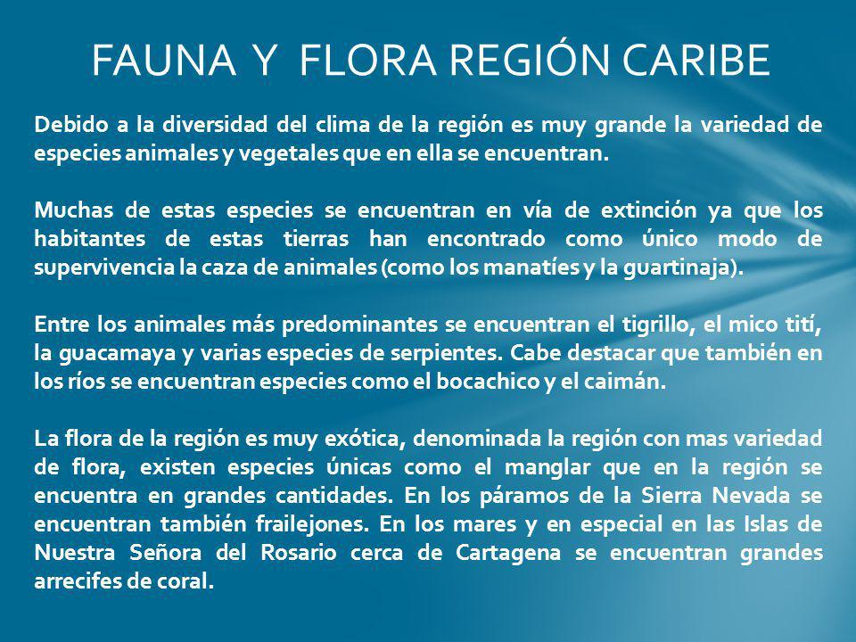FAUNA Y FLORA REGIÓN CARIBE