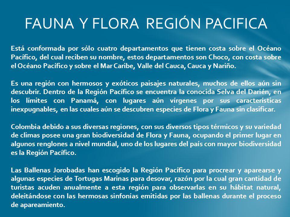 FAUNA Y FLORA REGIÓN PACIFICA