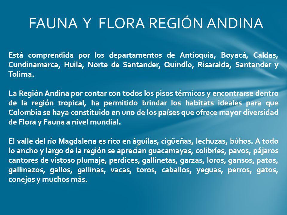 FAUNA Y FLORA REGIÓN ANDINA