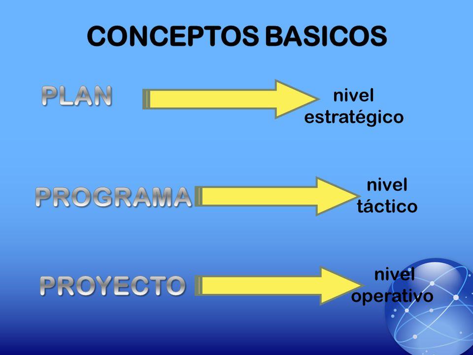 CONCEPTOS BASICOS PLAN PROGRAMA PROYECTO nivel estratégico
