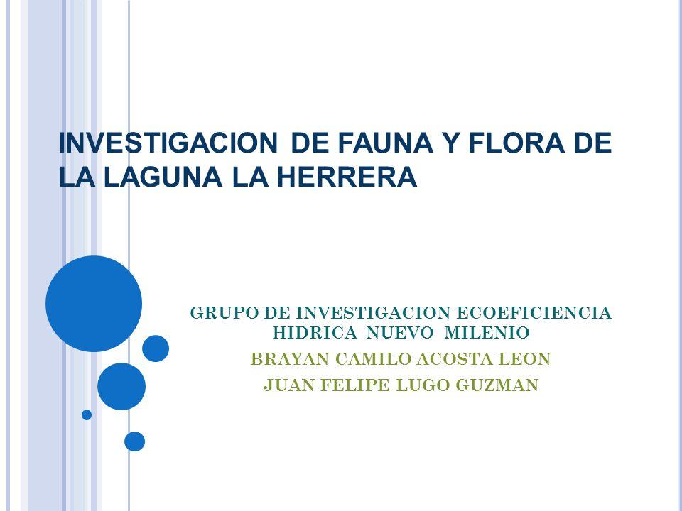 INVESTIGACION DE FAUNA Y FLORA DE LA LAGUNA LA HERRERA