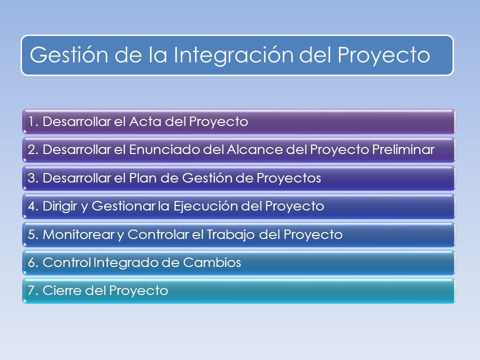 Gestión de la Integración del Proyecto