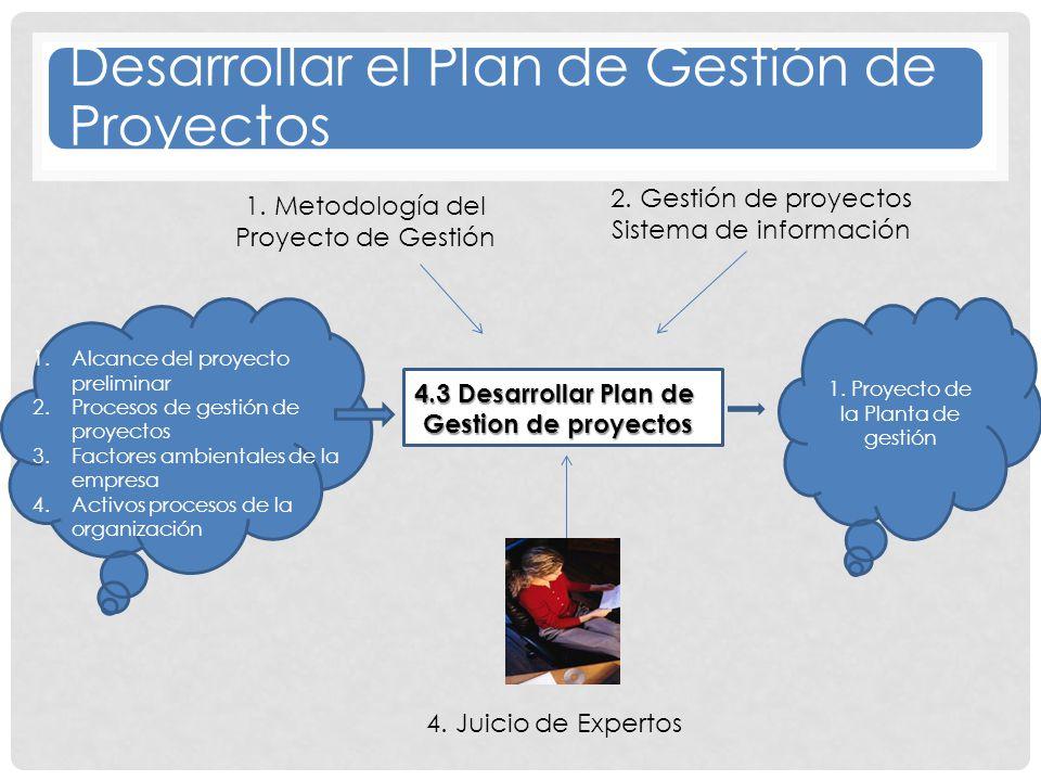 Desarrollar el Plan de Gestión de Proyectos