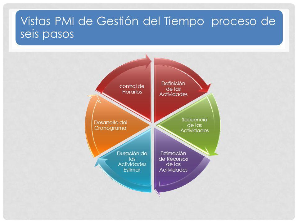 Vistas PMI de Gestión del Tiempo proceso de seis pasos