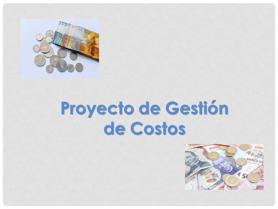 Proyecto de Gestión de Costos