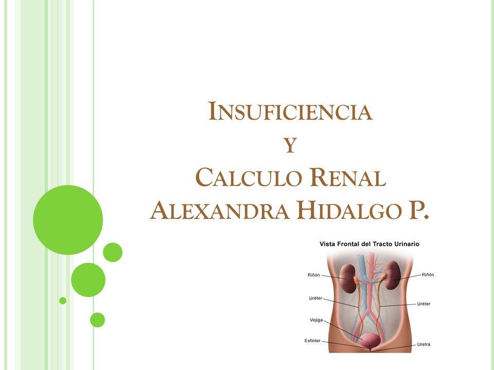 Insuficiencia y Calculo Renal Alexandra Hidalgo P.