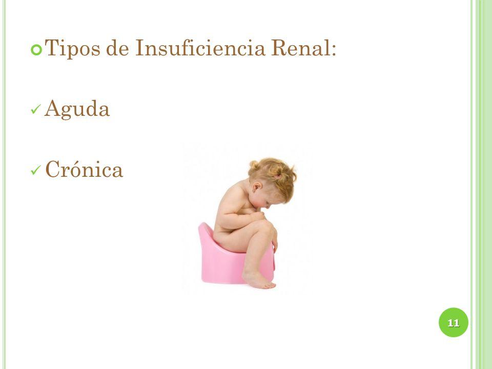 Tipos de Insuficiencia Renal: