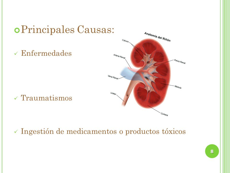 Principales Causas: Enfermedades Traumatismos