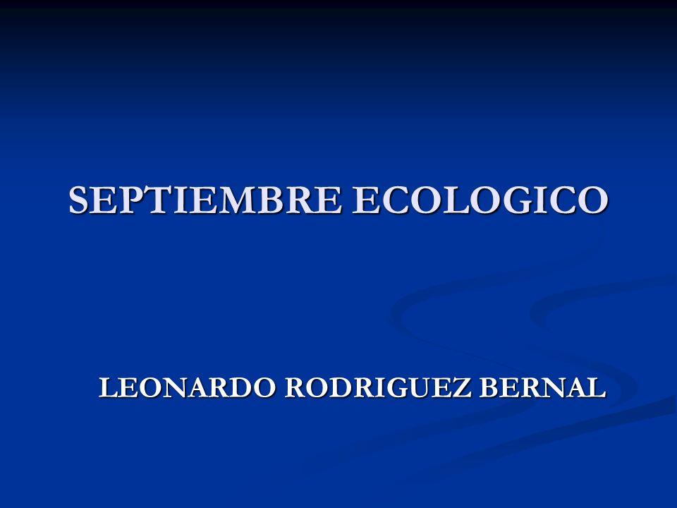 LEONARDO RODRIGUEZ BERNAL