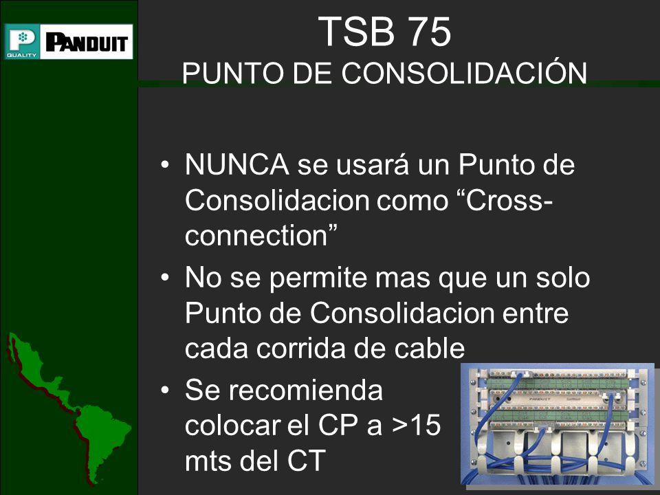 TSB 75 PUNTO DE CONSOLIDACIÓN