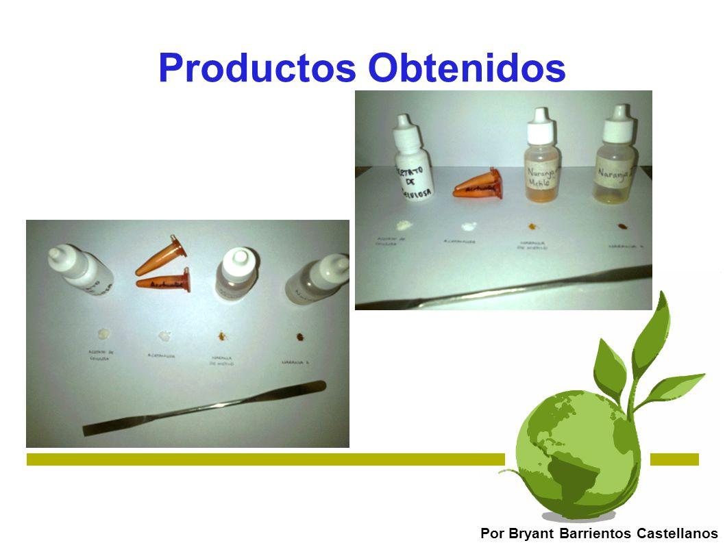 Productos Obtenidos Por Bryant Barrientos Castellanos