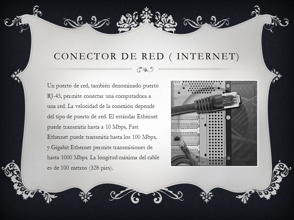 Conector de red ( internet)