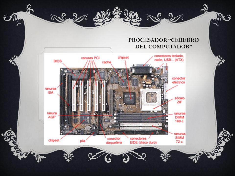 Procesador cerebro del computador