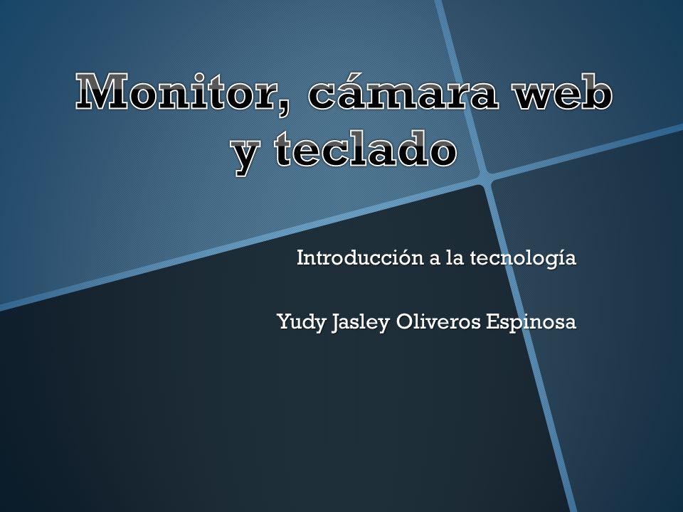 Monitor, cámara web y teclado