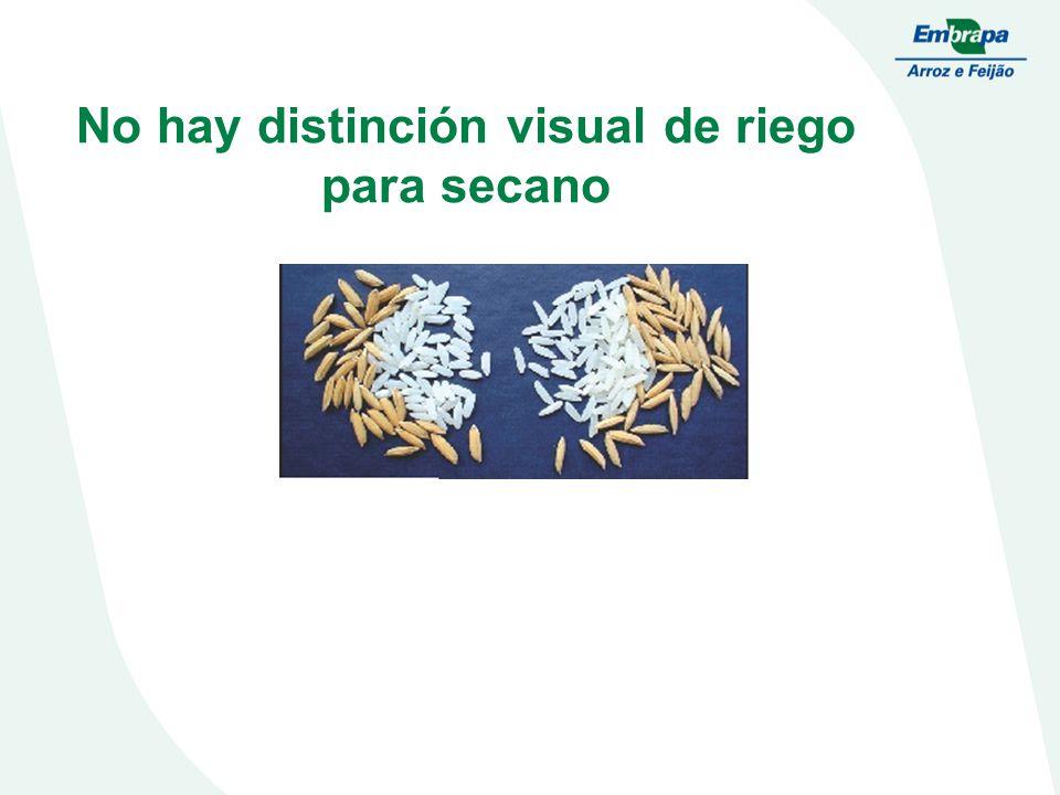 No hay distinción visual de riego