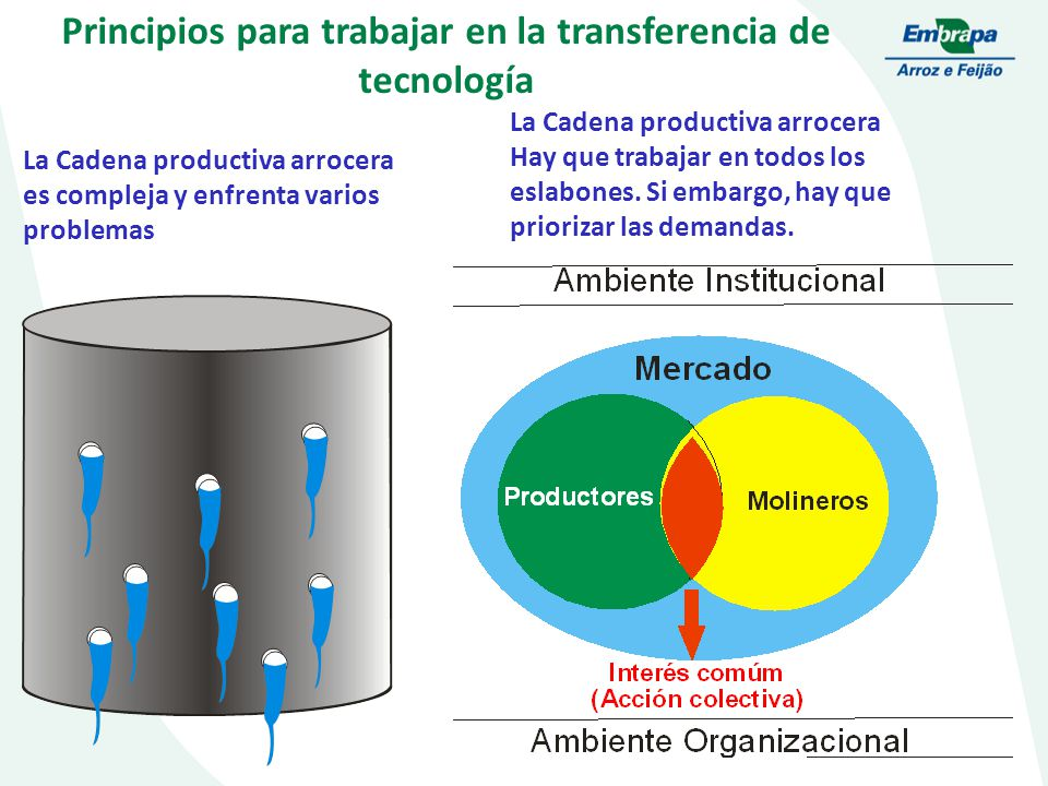 Principios para trabajar en la transferencia de tecnología