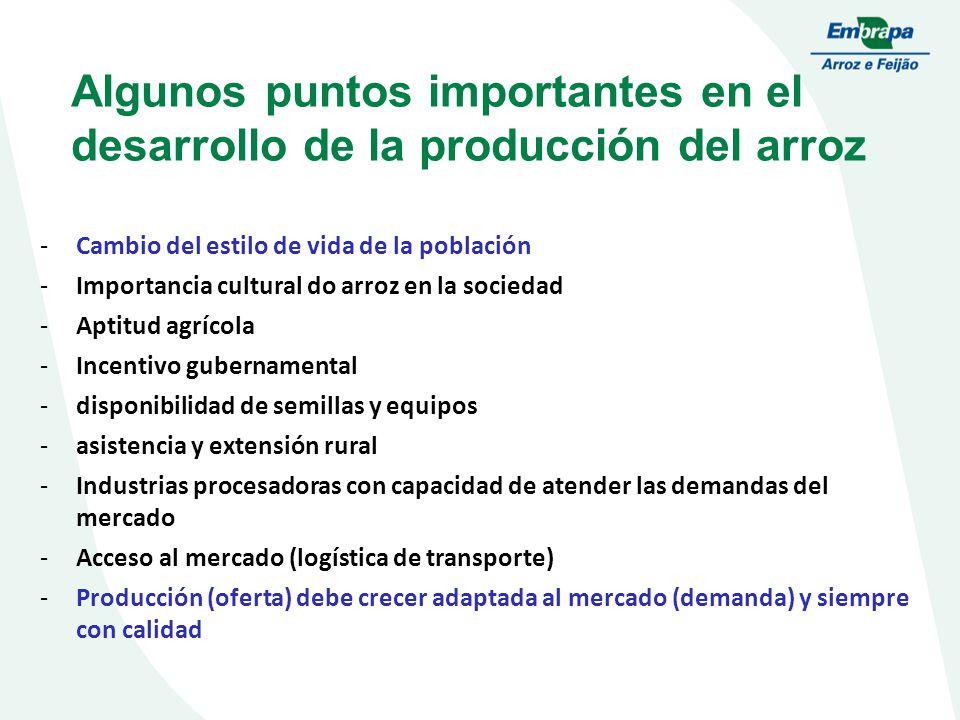 Algunos puntos importantes en el desarrollo de la producción del arroz