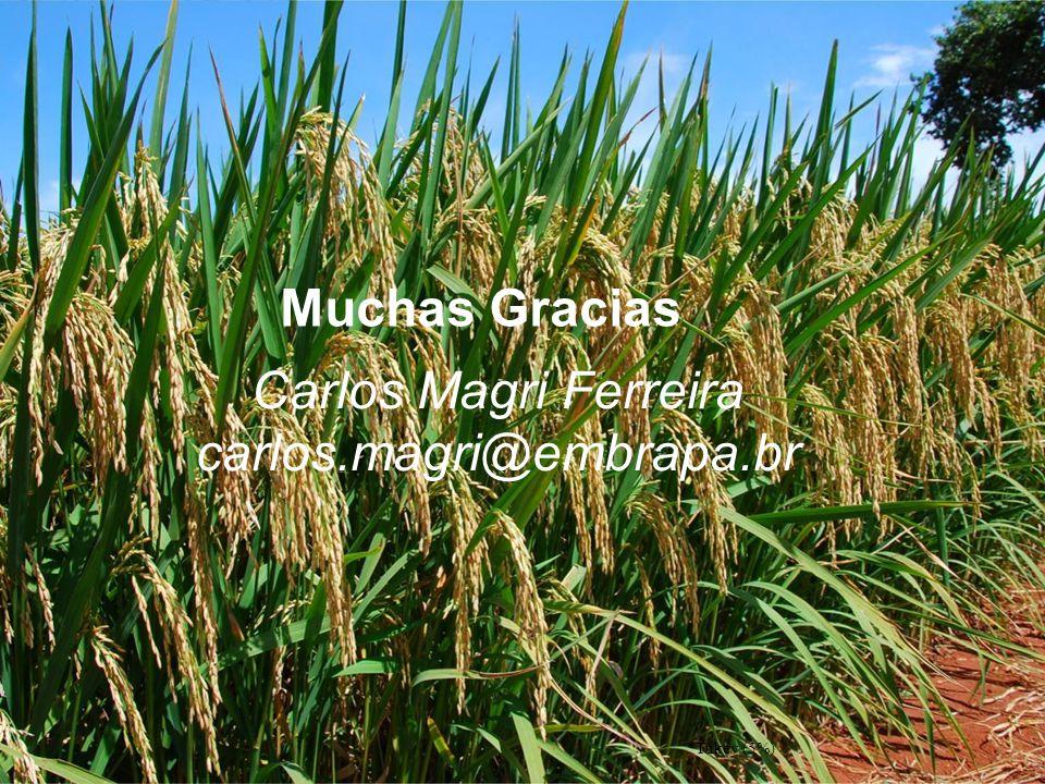 Carlos Magri Ferreira carlos.magri@embrapa.br