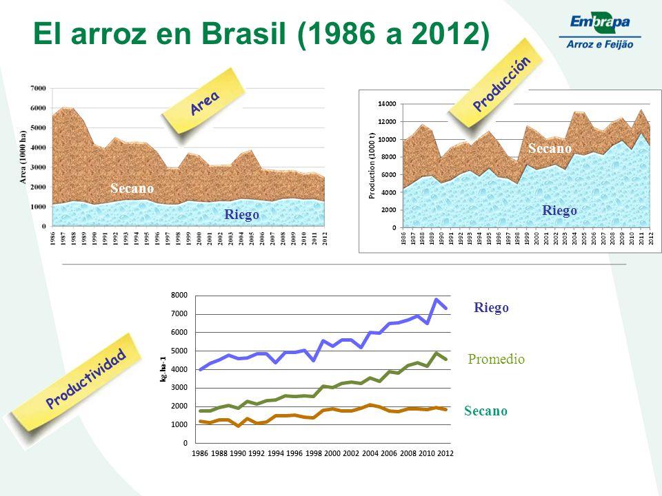El arroz en Brasil (1986 a 2012) Producción Area Secano Upland Secano