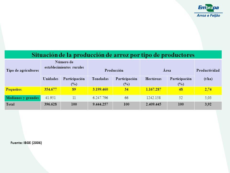 Situación de la producción de arroz por tipo de productores