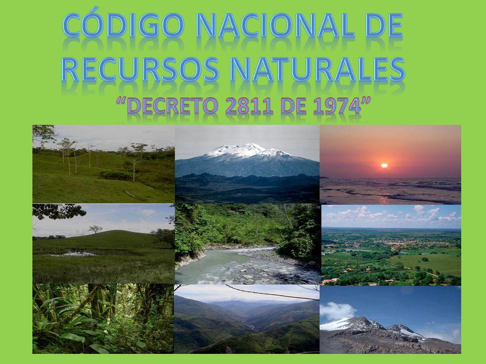 Código nacional de recursos naturales
