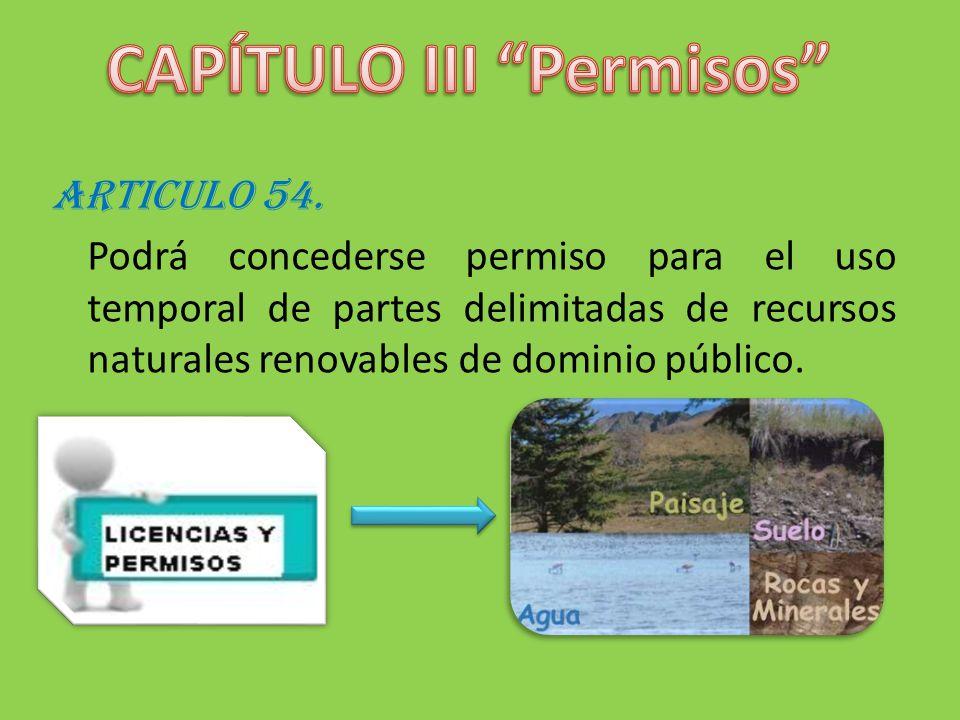 CAPÍTULO III Permisos