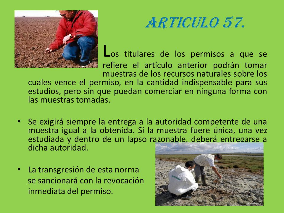 ARTICULO 57.