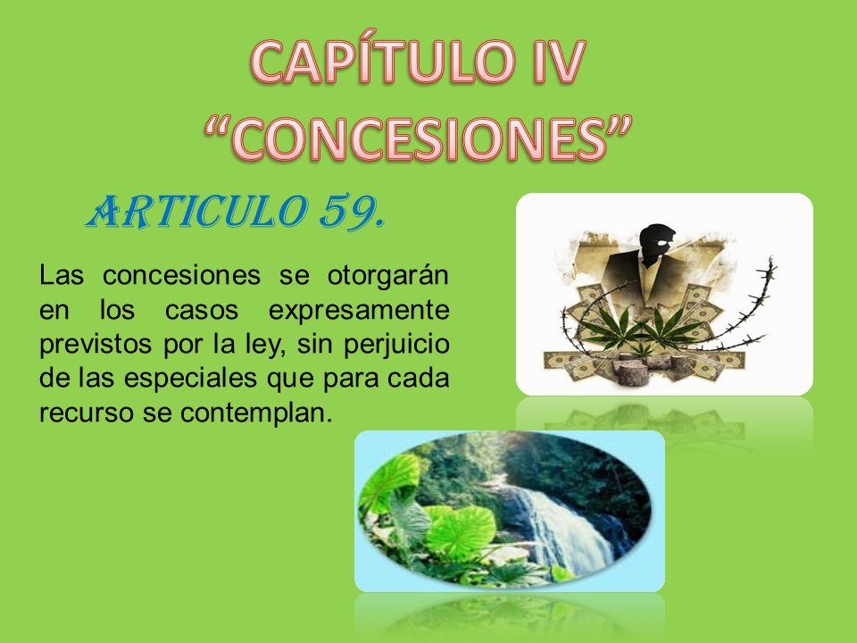 CAPÍTULO IV CONCESIONES