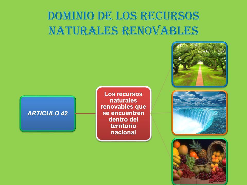 dominio de los recursos naturales renovables