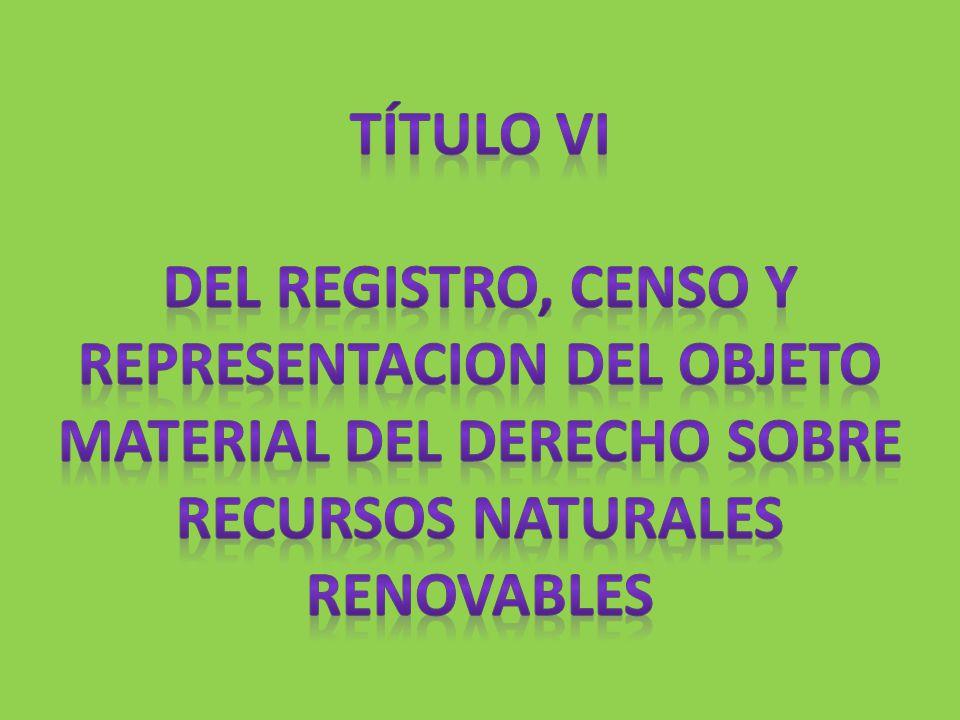 TÍTULO VI del REGISTRO, CENSO Y REPRESENTACION DEL OBJETO MATERIAL DEL DERECHO SOBRE RECURSOS NATURALES RENOVABLES.