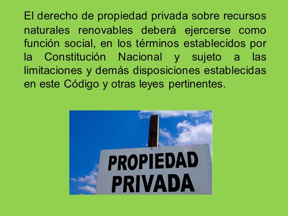 El derecho de propiedad privada sobre recursos naturales renovables deberá ejercerse como función social, en los términos establecidos por la Constitución Nacional y sujeto a las limitaciones y demás disposiciones establecidas en este Código y otras leyes pertinentes.