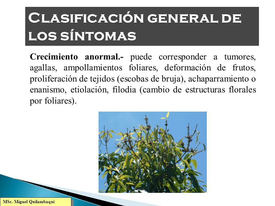 Clasificación general de los síntomas